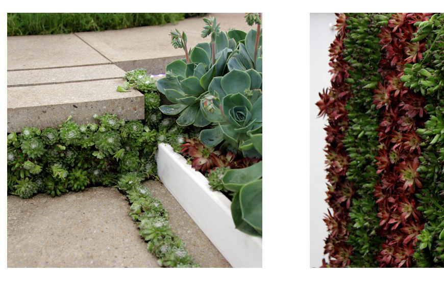 the details are important, a green step riser in our chelsea flower show garden by greencube