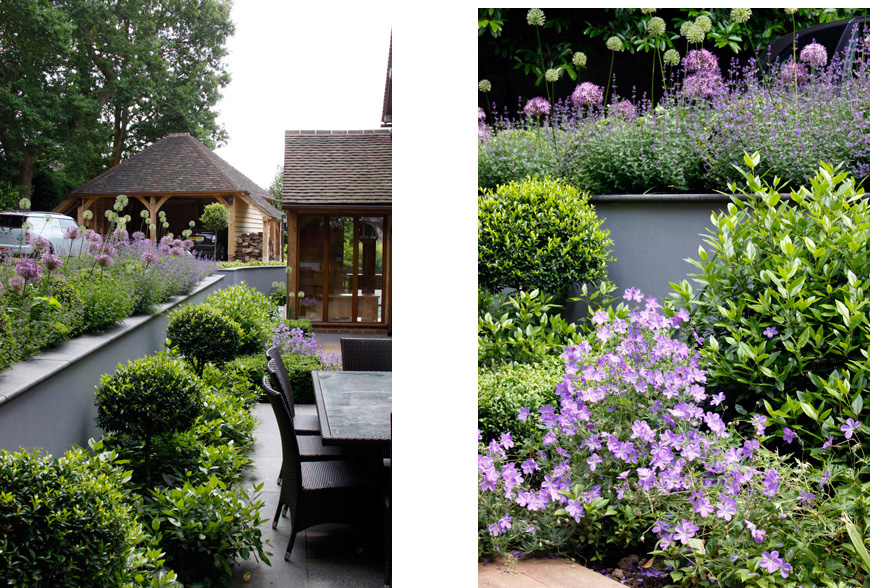 greencube garden design use our favourite geranium in our tunbridge wells, kent garden to colourfully fill planting gaps